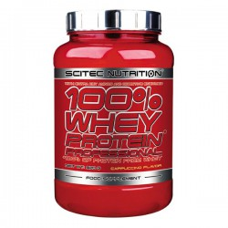 100% WHEY PROTEIN / PROFESSIONAL (920gr)
