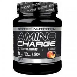 AMINO CHARGE (570G)